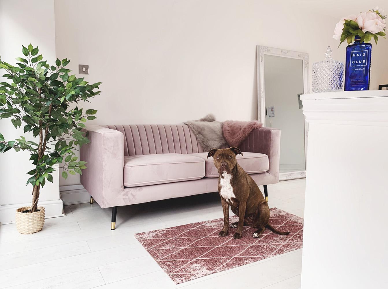 Rosa Slender-Sofa in einem geräumigen Wohnzimmer